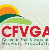 CFVGA to hold 3rd annual conference in February