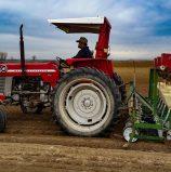 Northwest growers planning, planting new crop