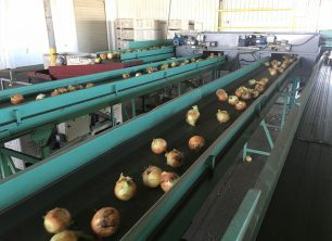 Market and Crop Updates for June 22