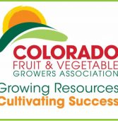 CFVGA, CPS hosting Research Symposium in Denver