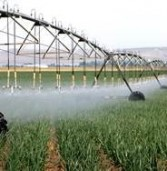River Point Farms implements water-minimizing system