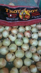 Close up of Imperial Valley Onions. Photo provided by John Vlahandreas, Wada Farms for Caston