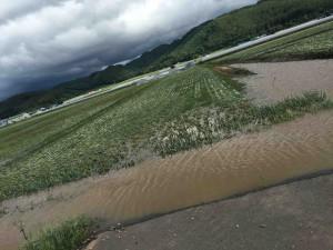 Kamikawa area of Hokkaido, Courtesy of Stu Follen, SL Follen Company