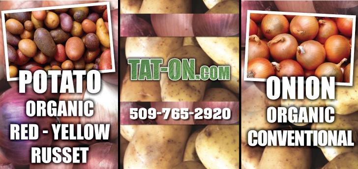 Tat-On, Inc.